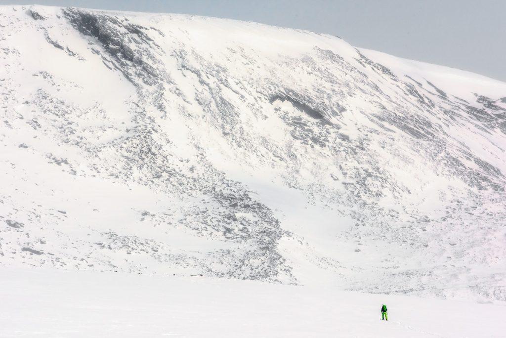 Det är stora vidder och höga berg här i Dovrefjell.