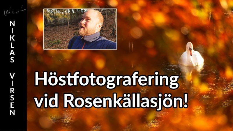 Höstfotografering och inspiration.