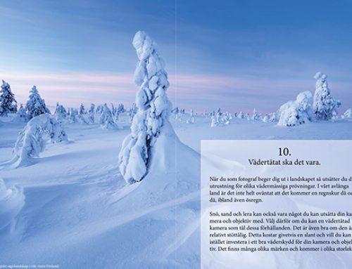 Gratis e-bok ger dig 35 råd & tips om naturfotografering.