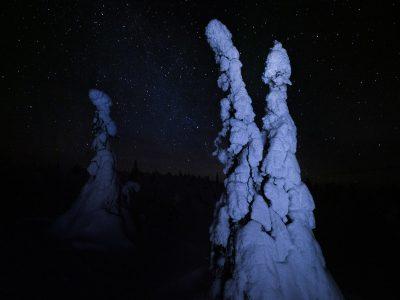 Stjärnor på natthimlen i Riisitunturi nationalpark