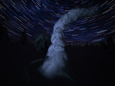 Star-trails nattetid En kylig morgon med vackert klart väder och gnistrande snö i Riisitunturi nationalpark.