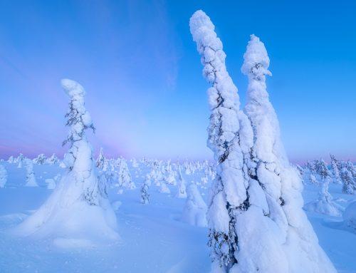 Var fotograferar du  det ultimata vinterparadiset? Här är svaret!
