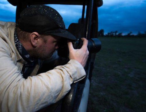 Några visdomsord till dig som naturfotograf.