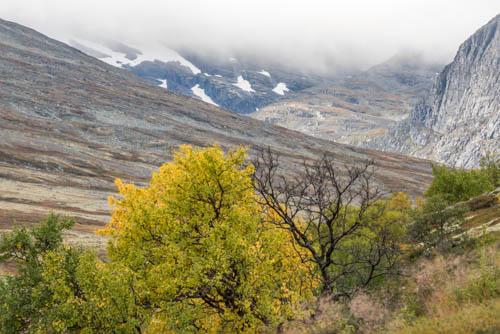 Rondane och Dovrefjell