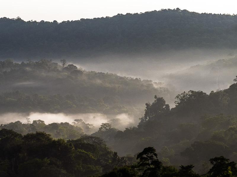 Uganda dimma över bergen.