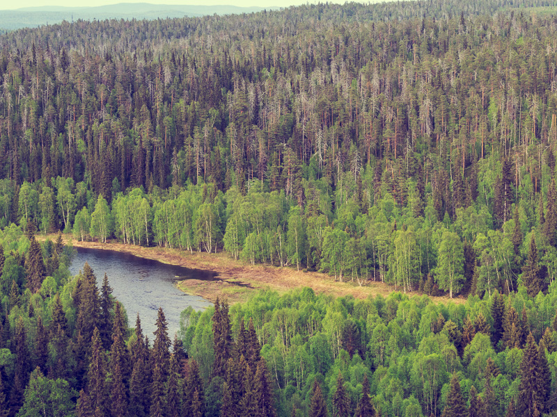 Kitanjoki, Finland.