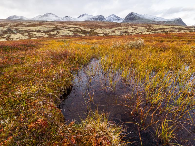Göl och berg i Rondane.
