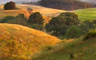 Böljande landskap i skiftande färger.