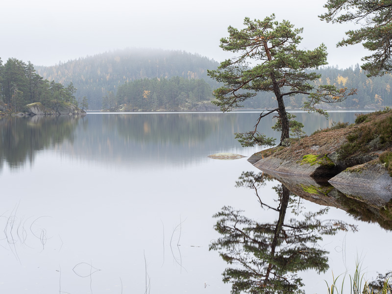 Stilla sjö i Tiveden.