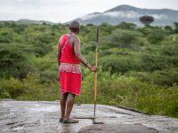 Masai på sitt berg.
