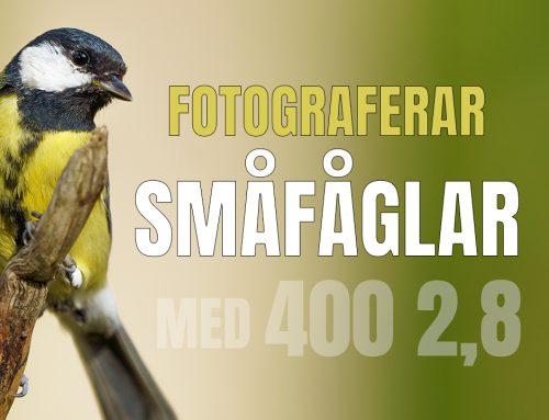 Jag fotograferar småfåglar med 400 2,8.