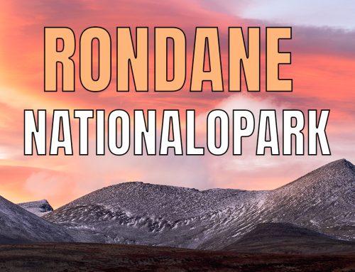 Videorapport från Rondane nationalpark 2021.